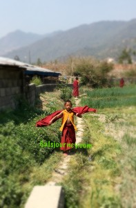 Little young Monk walking to the Monastery.